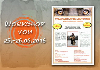 einladung workshop 2016-330px